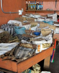 Human parts found at traditional healer's house in Free State