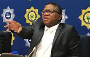 Mbalula issues call-up for more than 600 former 'freedom fighters'