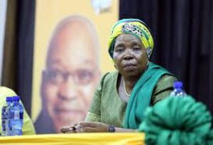 "Dlamini-Zuma: ""Whites stole the land from blacks and robbed the country"""
