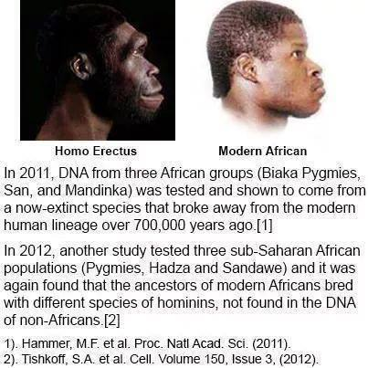 "out of africa theory The ""out of africa"" hypothesis of modern human origins  in contrast to theory of  proceedings of the national academy of sciences sep 2009, 106 (38."