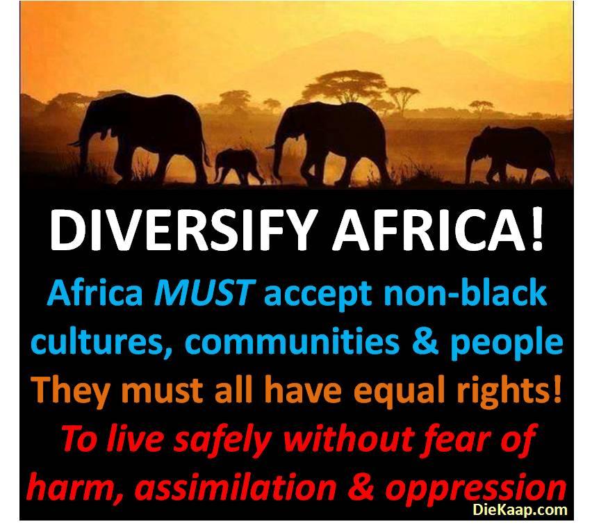 Diversify Africa