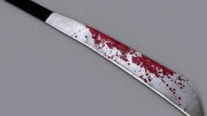 Elderly couple's machete nightmare a horrific ordeal