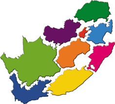 The ANC's plan to cut 9 provinces down to 6 condemned