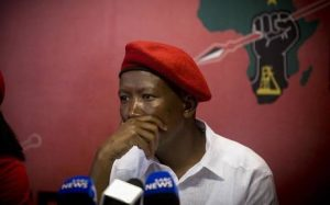 Malema: I'm Under Attack By Kleptocratic State – Such big words for such a small minded guy