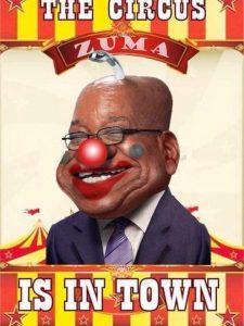 Zuma clown
