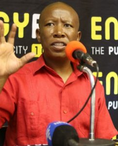 SA health system was better under apartheid, says Malema