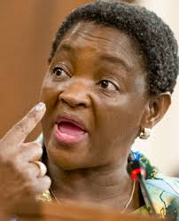Social Development Minister Bathabile Dlamini