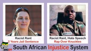 Afriforum says Momberg's sentence shows double standards on racism