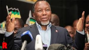 "Motlanthe's remarks ""that many tribal leaders behave like village tin pot dictators "" found offensive"