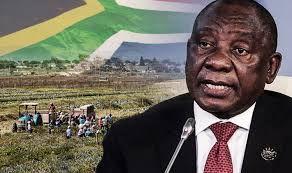 South Africa on brink of 'ANARCHY' as president demands that 195 land is SEIZED from white farmers'