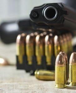 Police gun found in farm attacker's possession
