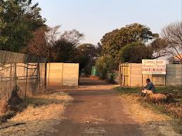 Another ANC failure - Carroll Shaw Memorial Centre is far from being a food-providing flagship for Gauteng, Krugersdorp farming NPO is a squalid dump