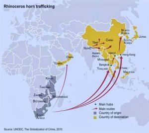 Wildlifer Trade