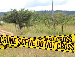 Pienaarsrivier: Farm murder, man fatally shot, partner hides in bathroom
