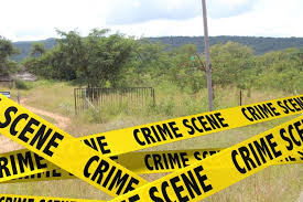 Farm attack, Waterval North -elderly victim severely beaten over the head for two cellphones