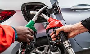 "The Automobile Association says South Africa motorists can expect ""massive"" fuel price cuts in January"