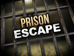 SA Prisons cant keep criminals insideanymore and it gets easier to escape confinement- Five suspects break out of prison in Mbombela by breaking the cell wall