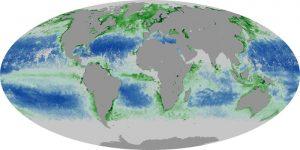 Southern Oceans Greener