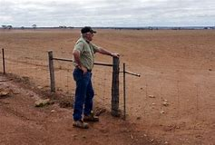Farmers in SA are left on their own to fight against forces of nature, only fellow farmers have sympathy