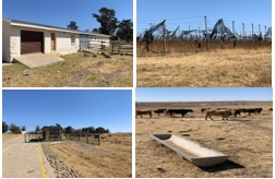Another multi-million agricultural flagship project by Ace Magashule failed - situation alarming, once again proving that land acquisition without compensation holds nothing good for SA