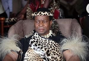 Experts strike back at Zulu king after he tried to stick his nose into state affairs