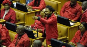 EFF says that Springbok rugby is a symbol of white supremacy against change