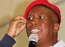 Malema says AgriSA's 'ugly white males' show who owns SA's land