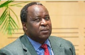 Mboweni has a screw loose, he now wants to open Lesotho's borders to form one-state with SA