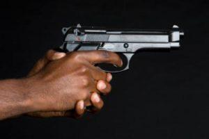 hand gun farm murder