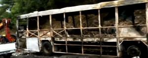 Ntuzuma bus